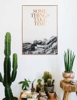 cactus-na-decoracao-11