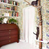 brinquedos para gatos arquitrecos via pinterest